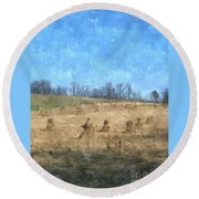 Farm Days 2 Round Beach Towel