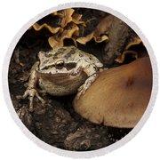 Fat Frog Round Beach Towel by Jean Noren