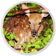 Fawn In The Forest - Inspirational - Religious Round Beach Towel