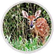 Fawn In The Grass Round Beach Towel by Marty Koch