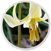 Fawn Lily Round Beach Towel