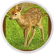 Fawn Poster Image Round Beach Towel