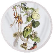Feasting And Fun Among The Fuschias Round Beach Towel