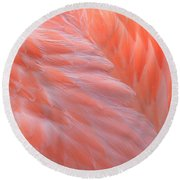 Feather Abstract 2 Round Beach Towel