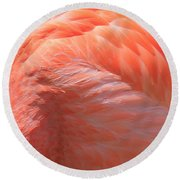 Feather Abstract 3 Round Beach Towel