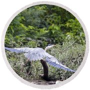 Feathering Flight Round Beach Towel