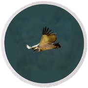 Feathers In Flight Round Beach Towel
