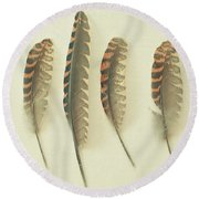 Feathers No2 Round Beach Towel