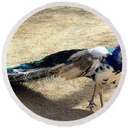 Feathers Of Many Colors Round Beach Towel