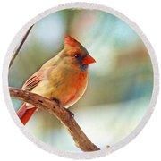 Female Cardinal - Digital Paint IIi Round Beach Towel