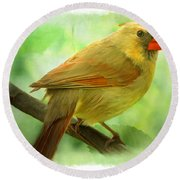 Female Cardinal In Elm Tree - Digital Paint Round Beach Towel