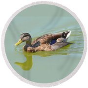 Female Mallard Duck  Round Beach Towel