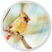 Female Northern Cardinal - Digital Paint I Round Beach Towel