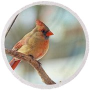 Female Northern Cardinal Round Beach Towel