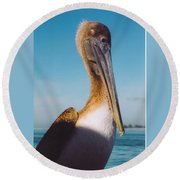 Female Pelican Round Beach Towel