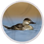 Female Ruddy Duck Round Beach Towel