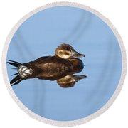Female Ruddy Duck Oxyurus Jamaicensis Round Beach Towel