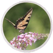 Female Tiger Butterly-1-featured In Macro-comfortable Art And Newbies Groups Round Beach Towel