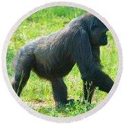 Female Western Lowland Gorilla Round Beach Towel