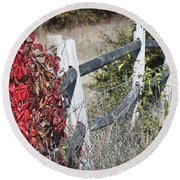 Fence And Creeper Round Beach Towel