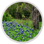 Fenced In Bluebonnets Round Beach Towel