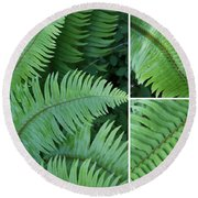 Fern Collage Round Beach Towel