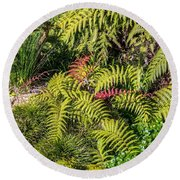 Ferns And More Round Beach Towel