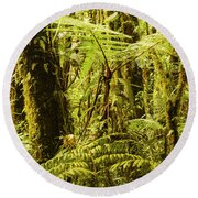 Ferns And Moss Round Beach Towel