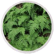 D3b6333-ferns In Sonoma 2  Round Beach Towel