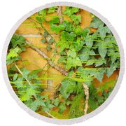 Ferns Vines And Lines 2am-112099 Round Beach Towel