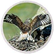 Ferruginous Hawk Male At Nest Round Beach Towel