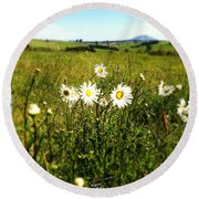 Field Of Flowers Round Beach Towel by Les Cunliffe