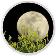 Field Of Gold By Moonlight Round Beach Towel