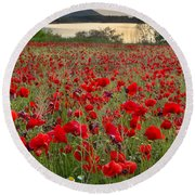Field Of Poppies At The Lake Round Beach Towel