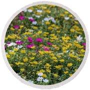 Field Of Pretty Flowers Round Beach Towel