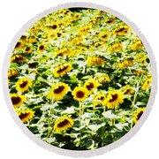 Field Of Sunflowers Round Beach Towel