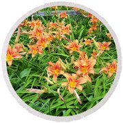 Field Of Tiger Lilies Round Beach Towel