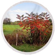 Field With Sumac In Autumn Round Beach Towel