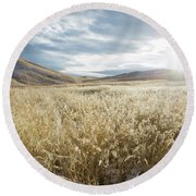 Fields Of Grass In Nevada Desert Round Beach Towel