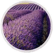 Fields Of Lavender Round Beach Towel