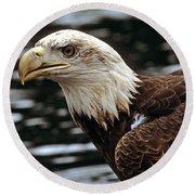 Fierce Bald Eagle Round Beach Towel