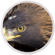 Fierce Golden Eagle Round Beach Towel