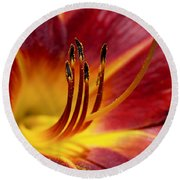 Fiery Lily Round Beach Towel by Rona Black