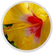 'fifth Dimension' Hibiscus Round Beach Towel