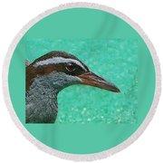Fijinan Bird 2 Round Beach Towel