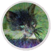 Filtered Cat Round Beach Towel