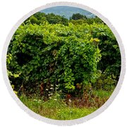 Finger Lakes Vineyard Round Beach Towel by Frozen in Time Fine Art Photography