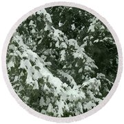 Fir Tree Branch Covered With Snow  Round Beach Towel