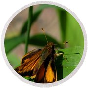 Fire Skipper Round Beach Towel