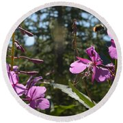 Fireweed Number 10  Round Beach Towel